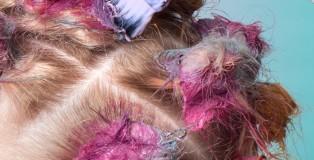 Blue Tit SunBun step-by-step image credit www.dhimmelbauer.com 4
