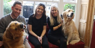 Q CANINE -www.salonbusiness.co.uk