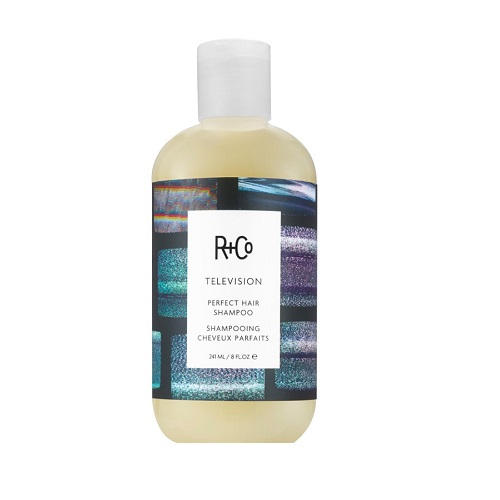 TELEVISION Perfect Hair Shampoo - www.salonbusiness.co.uk