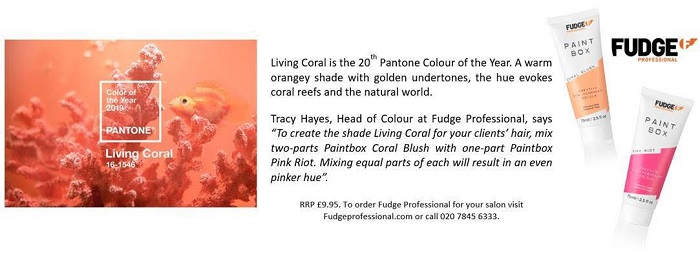 coral info - www.salonbusiness.co.uk