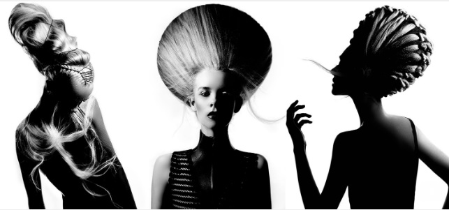 ANNE VECK HAIR IS ART  Expert education in Styling & Long Hair