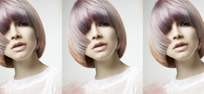 The Fellowship for British Hairdressing – Projects update