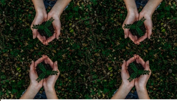 HAIRDOTCOM – 12 Steps to Sustainability
