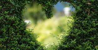 green heart - www.salonbuisness.co.uk